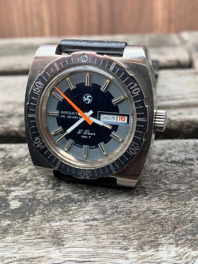 skin diver watch
