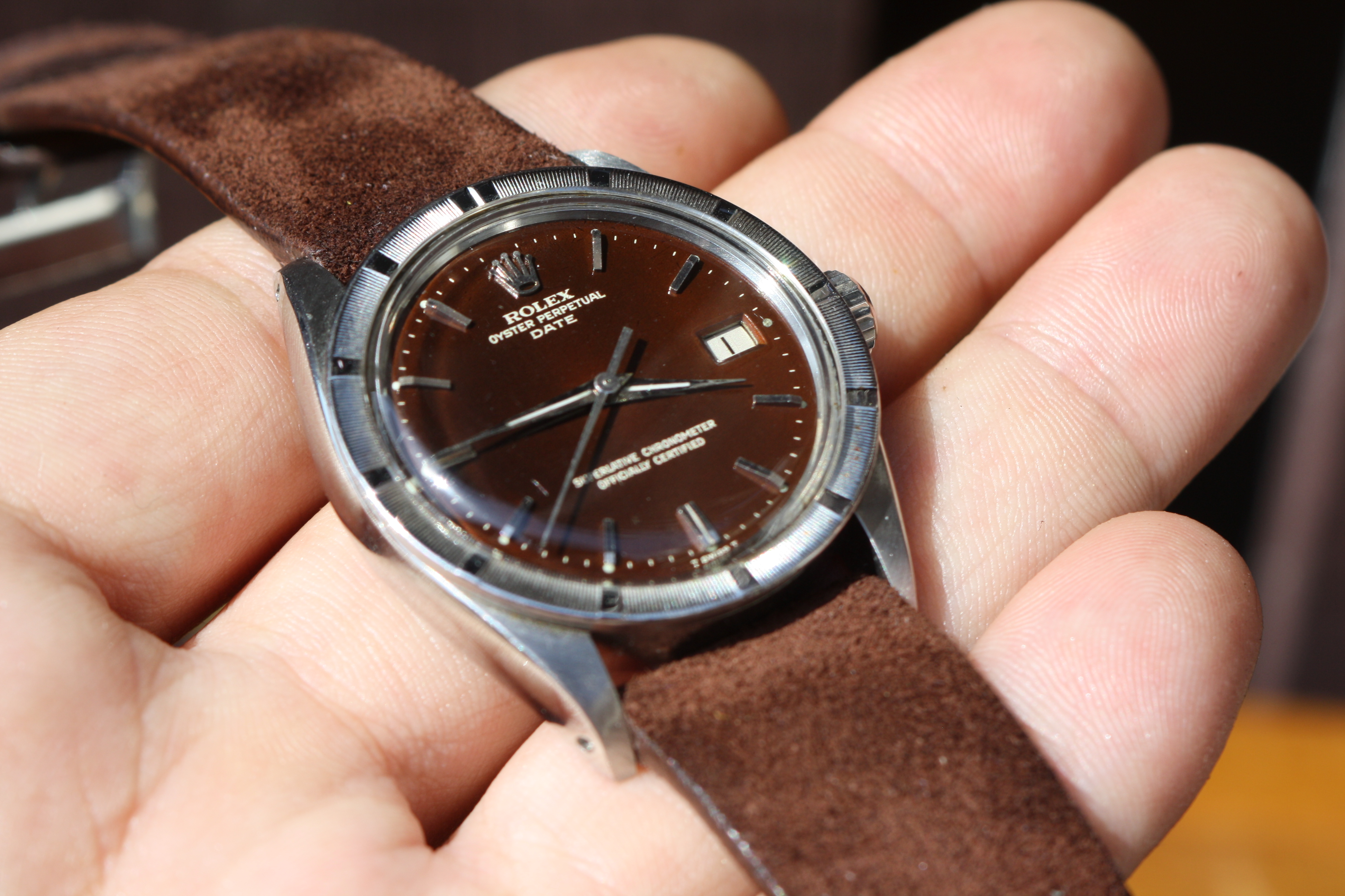 rolex 1501 chocolate dial